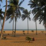 Plages de Ouidah